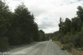 Sur la Carretera Austral entre Pto Rio Tranquillo et Villa Cerro Castillo - Région de Aysen - Chili