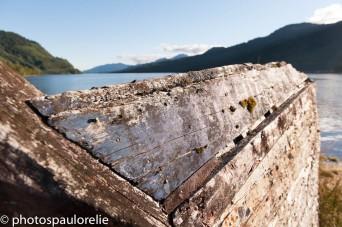 Costanera de Puyuhuapi - Région Aysen - Chili